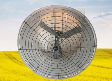 51 inch glass Steel Fan