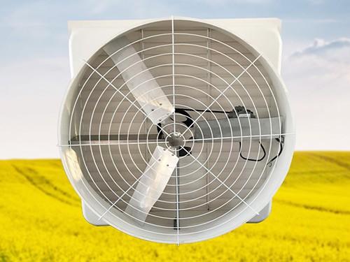50 inch glass Steel Fan